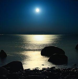 Kasumi Moon on Water Magic of Pearls Kasumi Moonglow